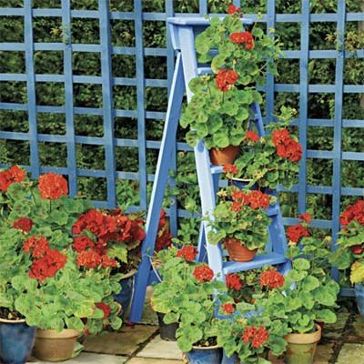 88 Quick And Easy Decorative Upgrades. Potted PlantsFlowers ...