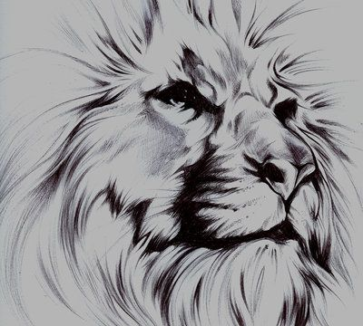 Deviantart More Like Owl Tattoo Outline By Cxloe Lion Sketch Lion Tattoo Design Tattoo Outline 1000 outline of lion tattoo free vectors on ai, svg, eps or cdr. pinterest
