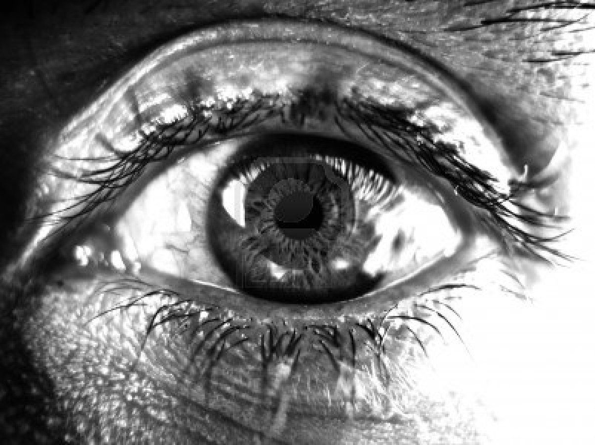 Black and white eye stock photo black and white google black white white eyes
