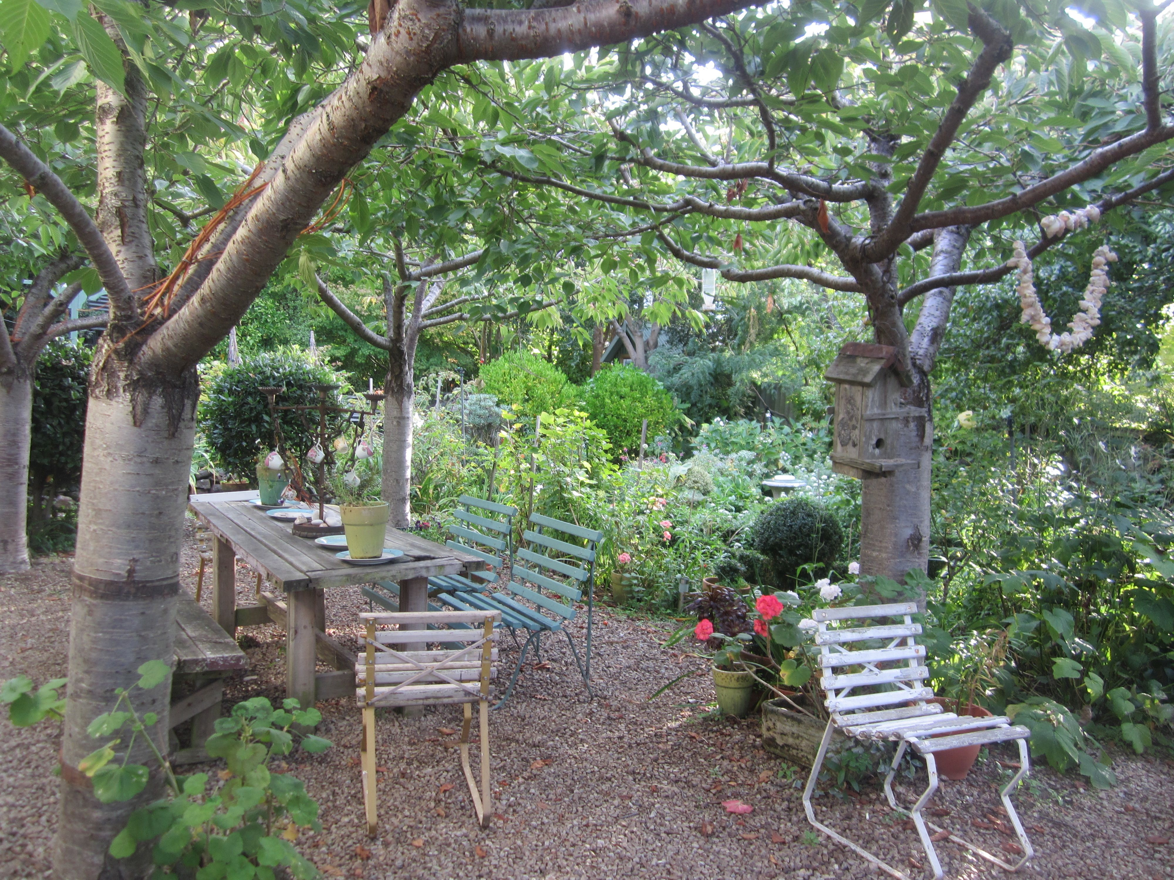 French Cottage Gardens New Zealand Home Cook My