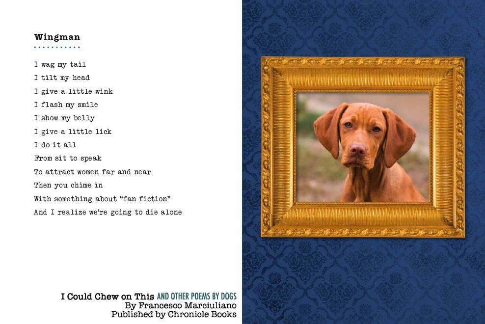 I Could Chew On This And Other Poems By Dogs The Book Dog Poems