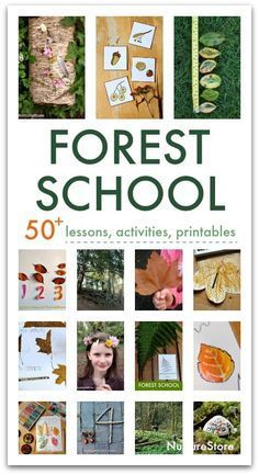 Photo of 35 forest school activities for outdoor classrooms