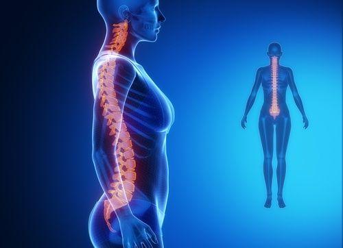 Tarvitset vain kaksi minuuttia - siis 120 sekuntia - venyttääksesi selkärankasi ja helpottaaksesi selkäkipua. Niin helppoa se on.