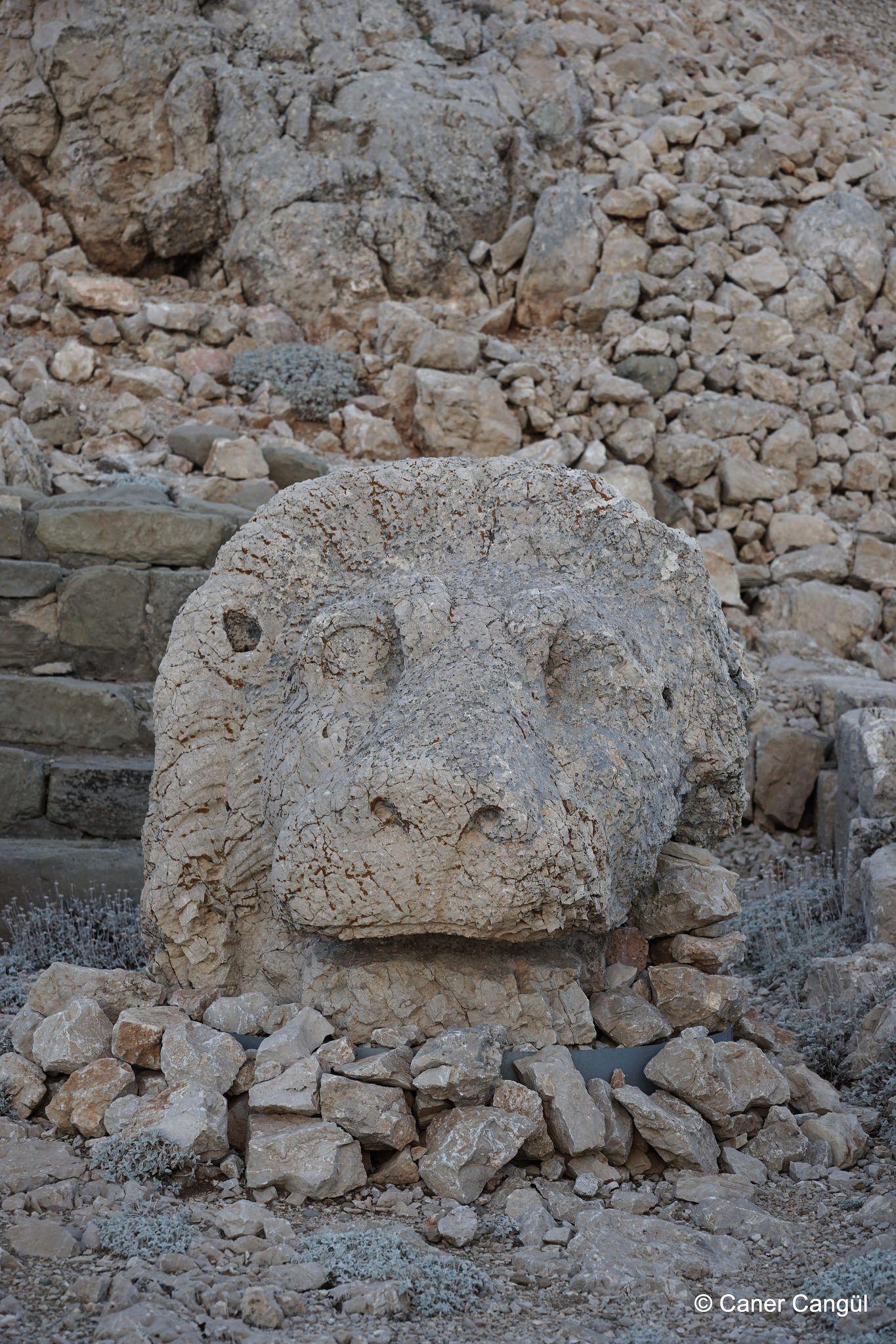 Nemrut Dağı Doğu Terası: Aslan