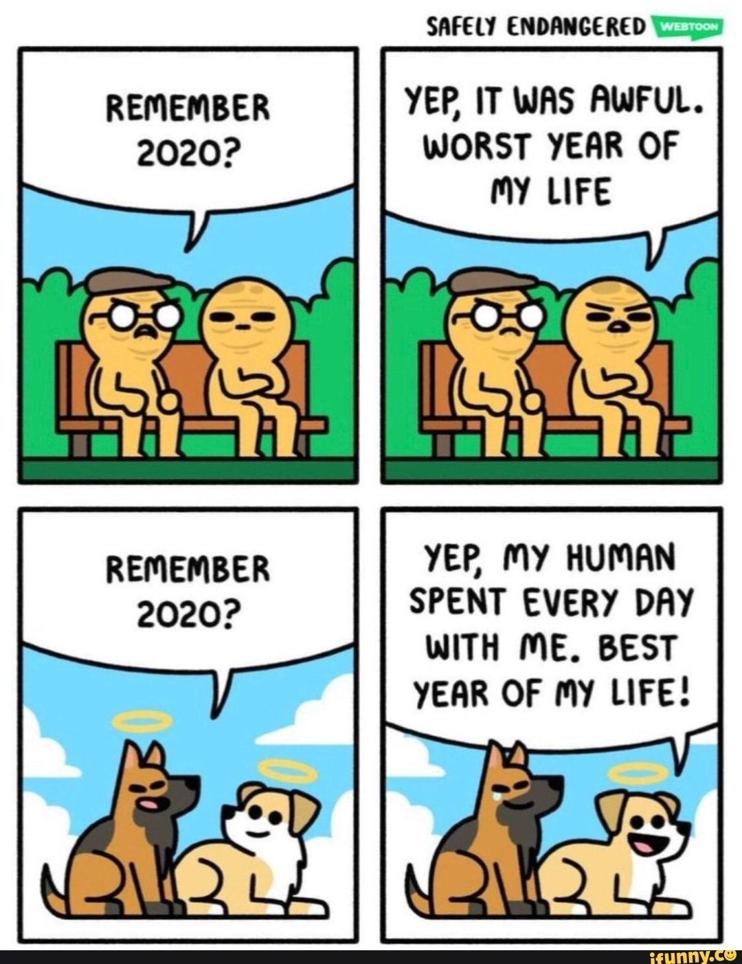 Safely Endangered Remember Yep It Was Awful 2020 Worst Year Of My Life Remember Yer My Human 2020 Spent Every Day With Me Best Year Of My Life Ifunny In
