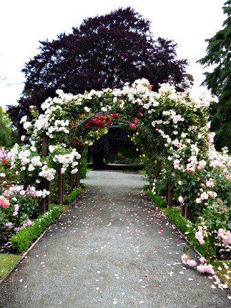 Neuseelands Rosengarten