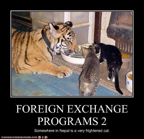 Photo of FOREIGN EXCHANGE PROGRAMS 2