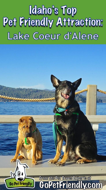 Idaho's Top Pet Friendly Attraction Lake Coeur d'Alene