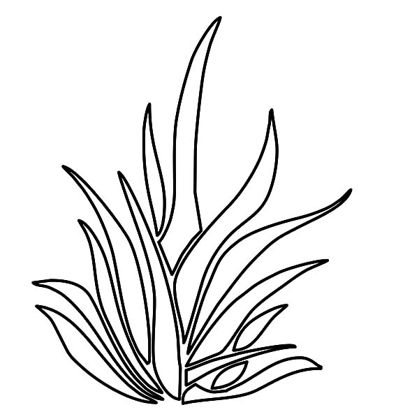 Coloring Pages Of Trees And Grass Tree With Roots Check More At Coloring Pages Horse Coloring Pages Colouring Pages