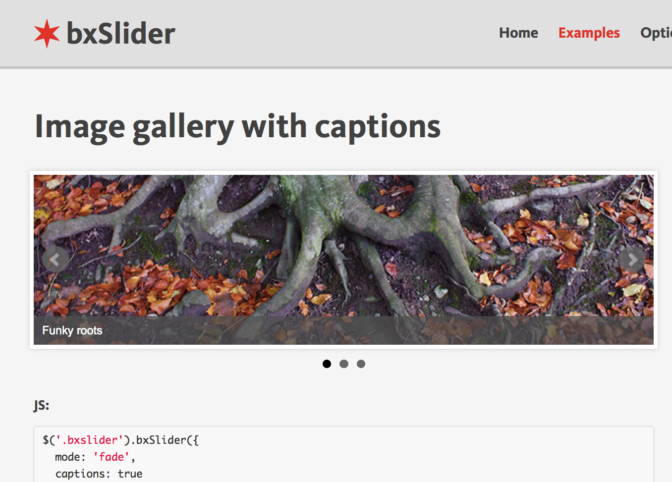 Learn how to use the bxSlider jQuery plug-in to install and