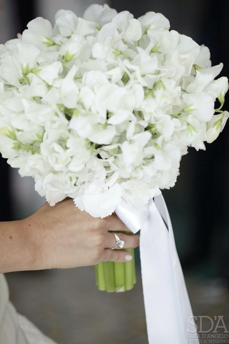 Fiori Bianchi E Odorosi.Bouquet Di Pisello Odoroso Con Gambo A Vista E Dettaglio Nastro