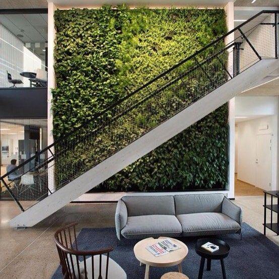Na Tailor temos os painéis vegetais ideais e sem manutenção para interiores e exteriores