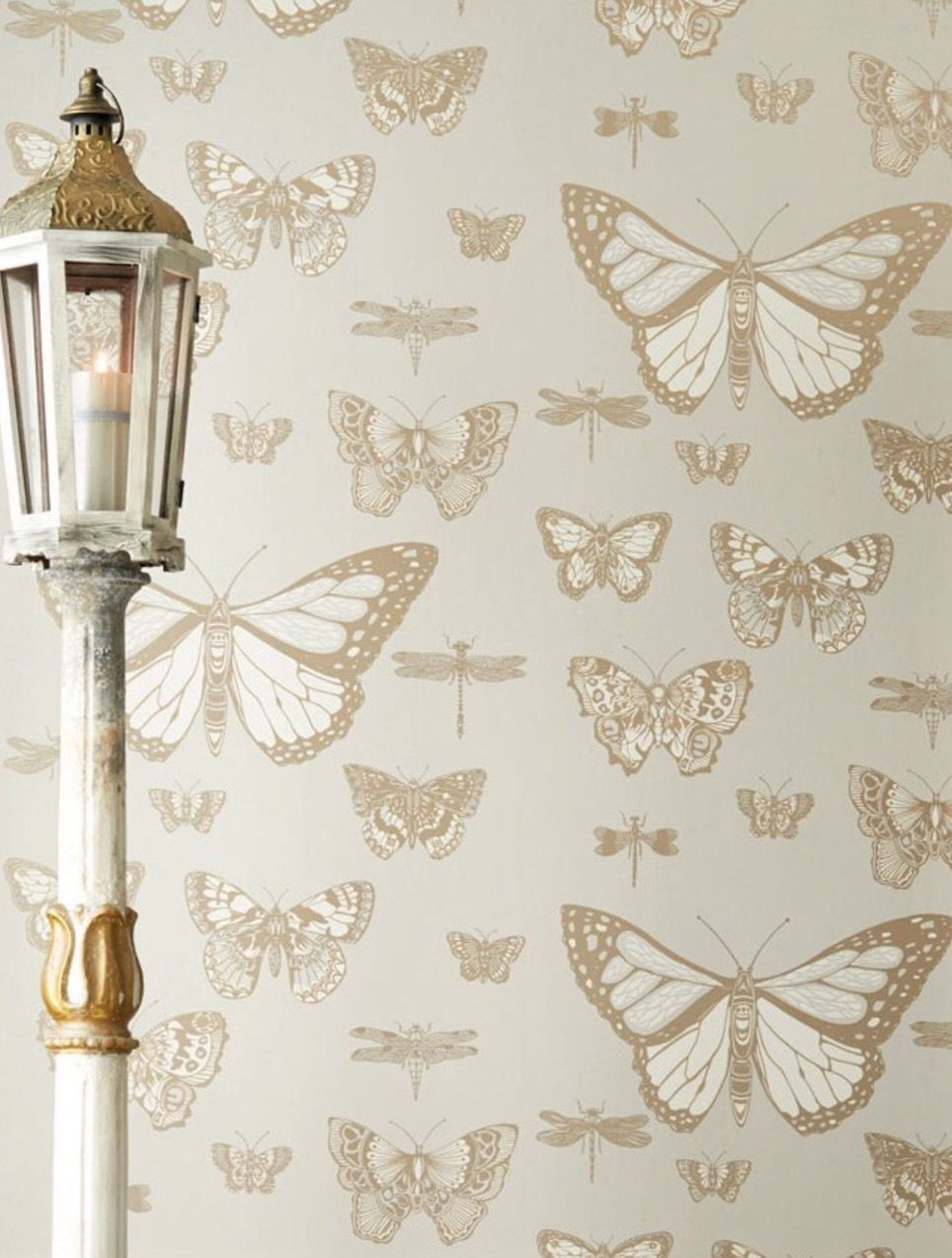 Details about NEW Anthropologie Cole & Sons Woods