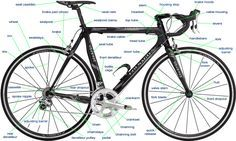 Ask The Bike Maven Bike Fitting 101 Bmx Bike Parts Triathlon