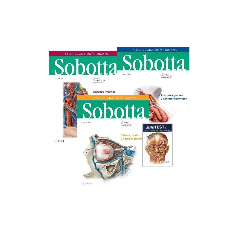 Atlas De Anatomía Humana Sobotta Editada Por Friedrich Paulsen Y Jens Waschke Topogràfic 611 084 4 Sob Noveta Atlas De Anatomía Anatomía Humana Anatomía