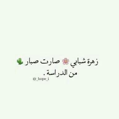 ههههه عاد خذا التعب كوله هلبت و الله نصير شي أن شاء الله Funny Arabic Quotes Funny Quotes Funny Texts