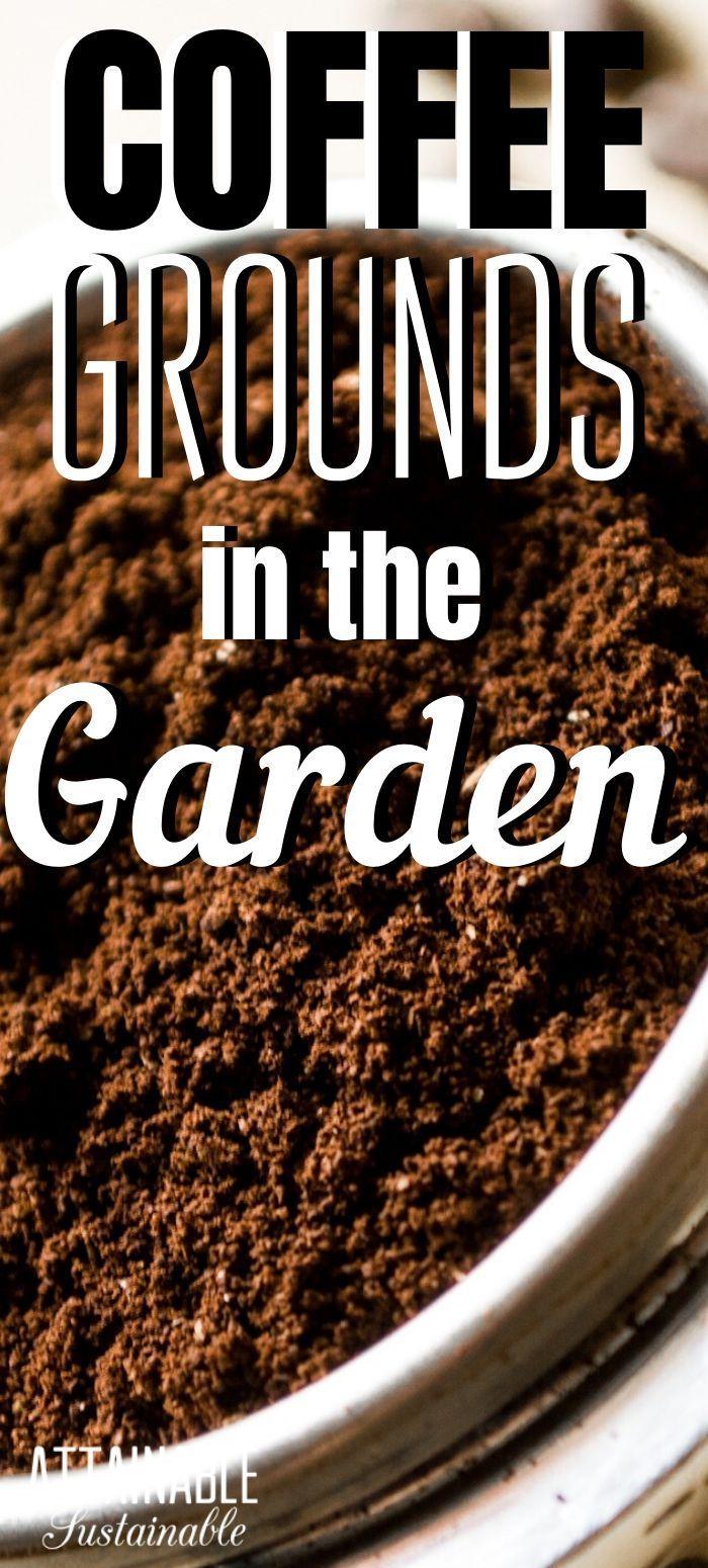 Composting Coffee Grounds In The Vegetable Garden Garden Coffee