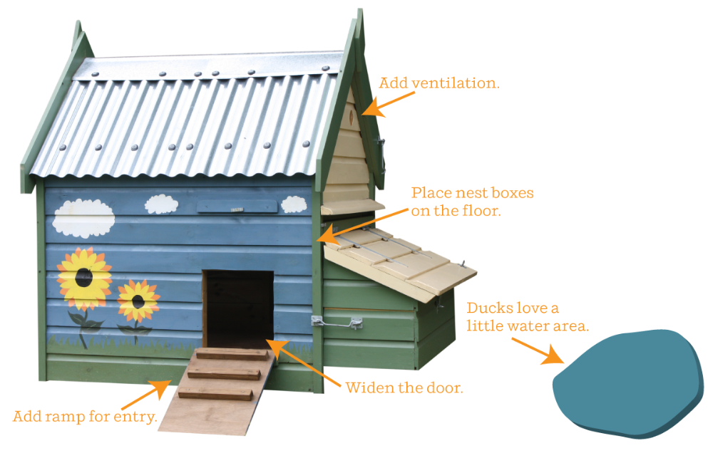 How to Convert a Chicken Coop into a Duck House