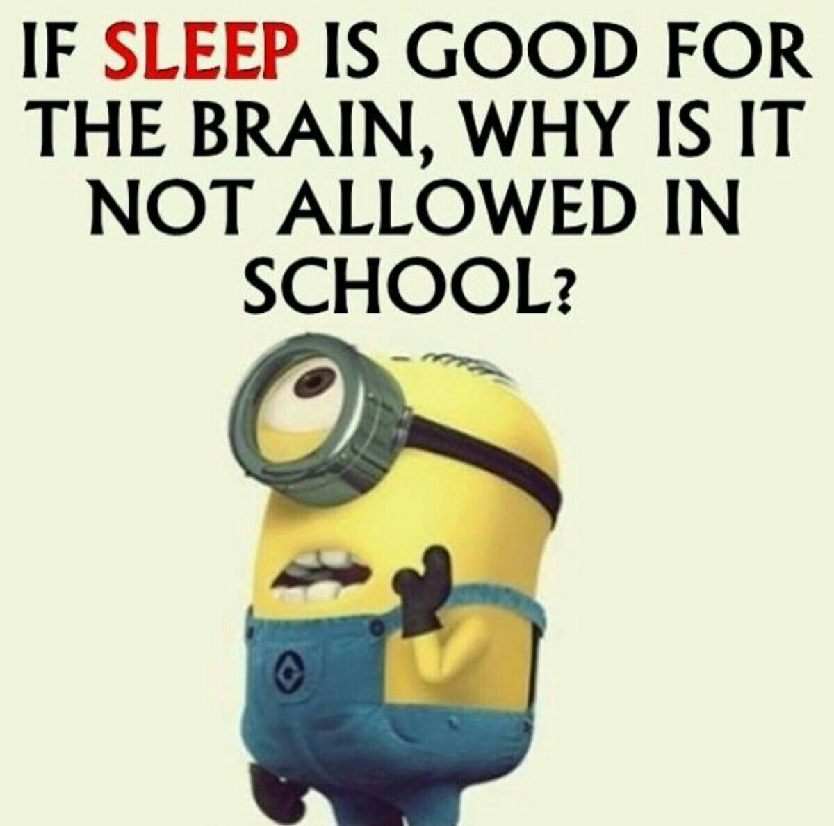 Pin By Raechal Carron On Funny Minion Quotes Funny Minion Quotes Funny Quotes Funny Minion Pictures