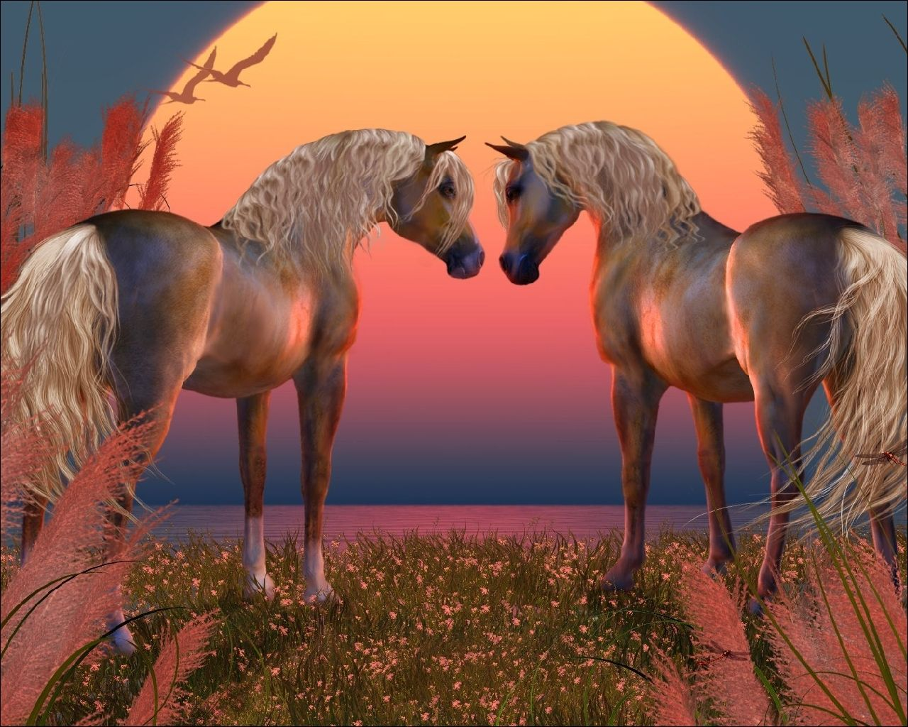 Cool Wallpaper Horse Couple - daf10c38fd01992aa37ffc7905bd9cd3  Photograph_14367.jpg