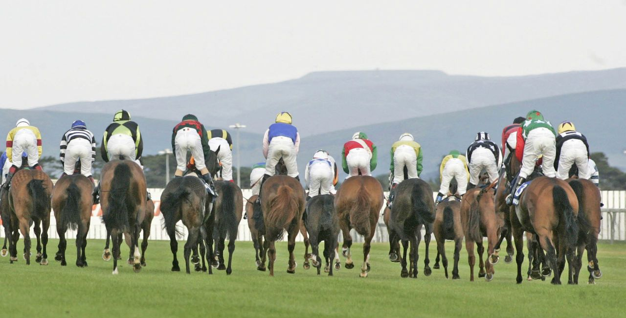 The Curragh Racecourse Ireland Http Www Racingfuture Com Content