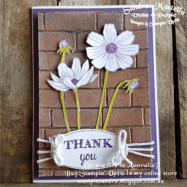 Violet vs Purple: Helping Me Grow - Sarah Berry blog Hop