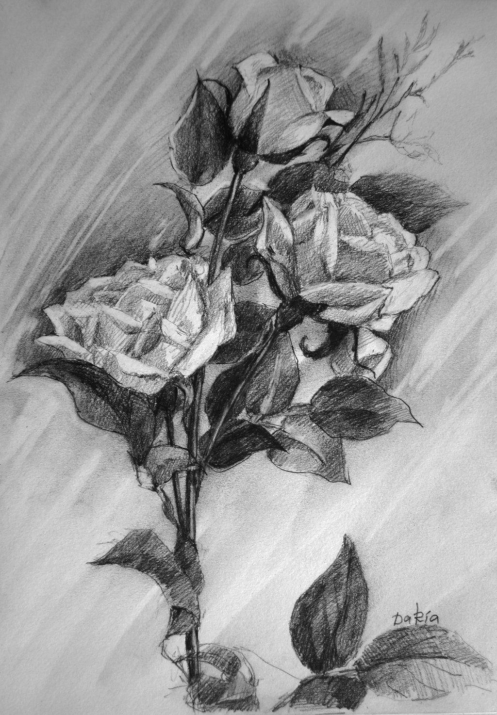 Картинки по запросу roses sketch flowers pinterest flowers