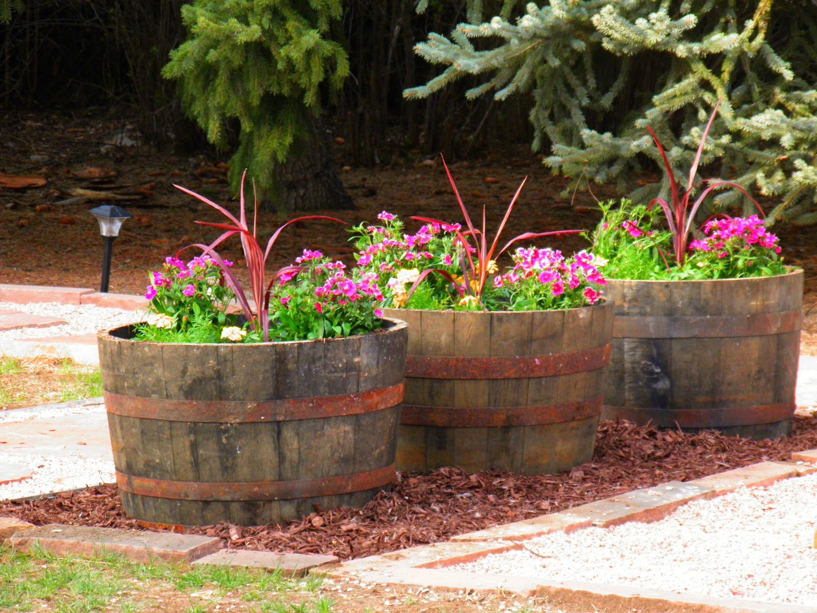 Whiskey Barrel Flower Pots | Garden, Yard & Patio Ideas | Pinterest ...