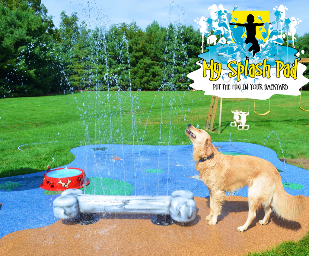 Our Splash Pads Are For The Dogs Dog Playground Dog