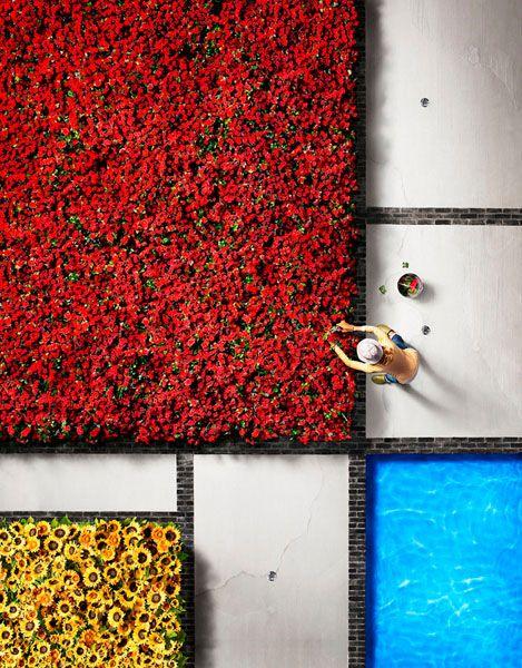 Mondrians Garden