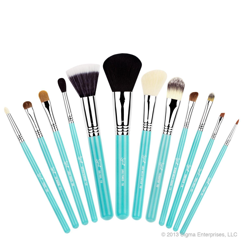 SigmaPintoWin Sigma brushes set, Sigma makeup brushes