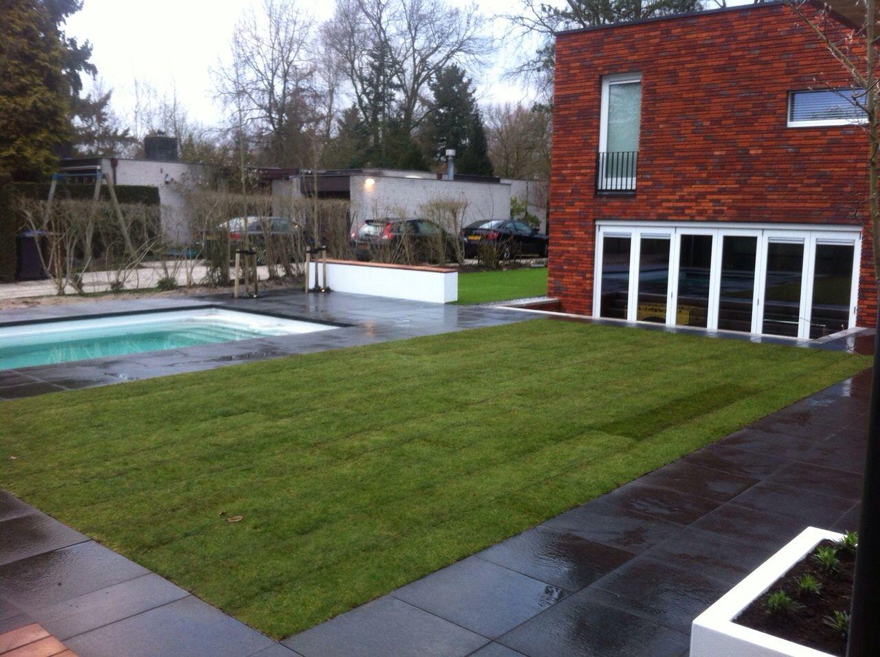 Grote Moderne Tuin Achtertuin Gazon Graszoden Kunstgras