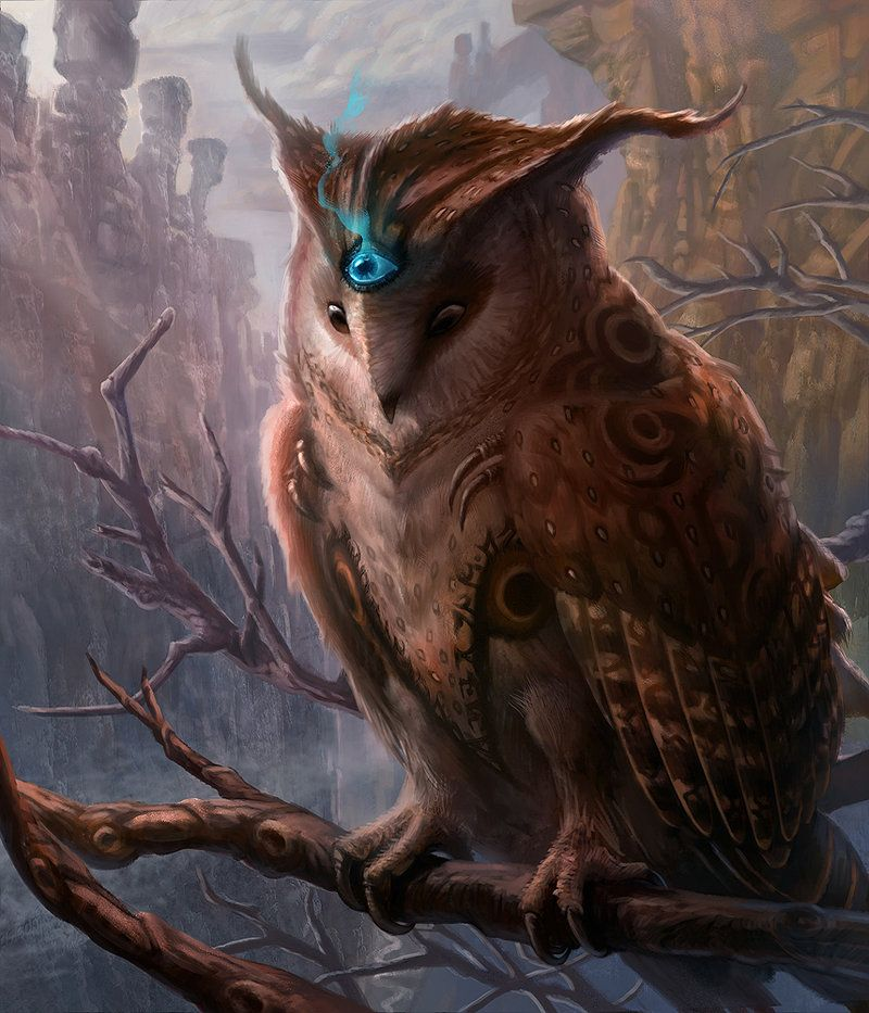 Owl (Diniao) by ~jubjubjedi on deviantART