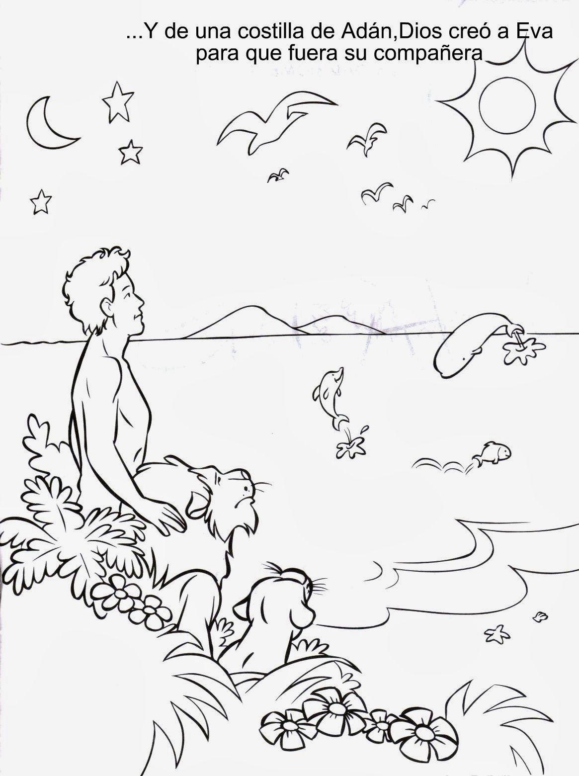 Dibujos Para Colorear De La Creacion | Imagenes Cristianas Para ...
