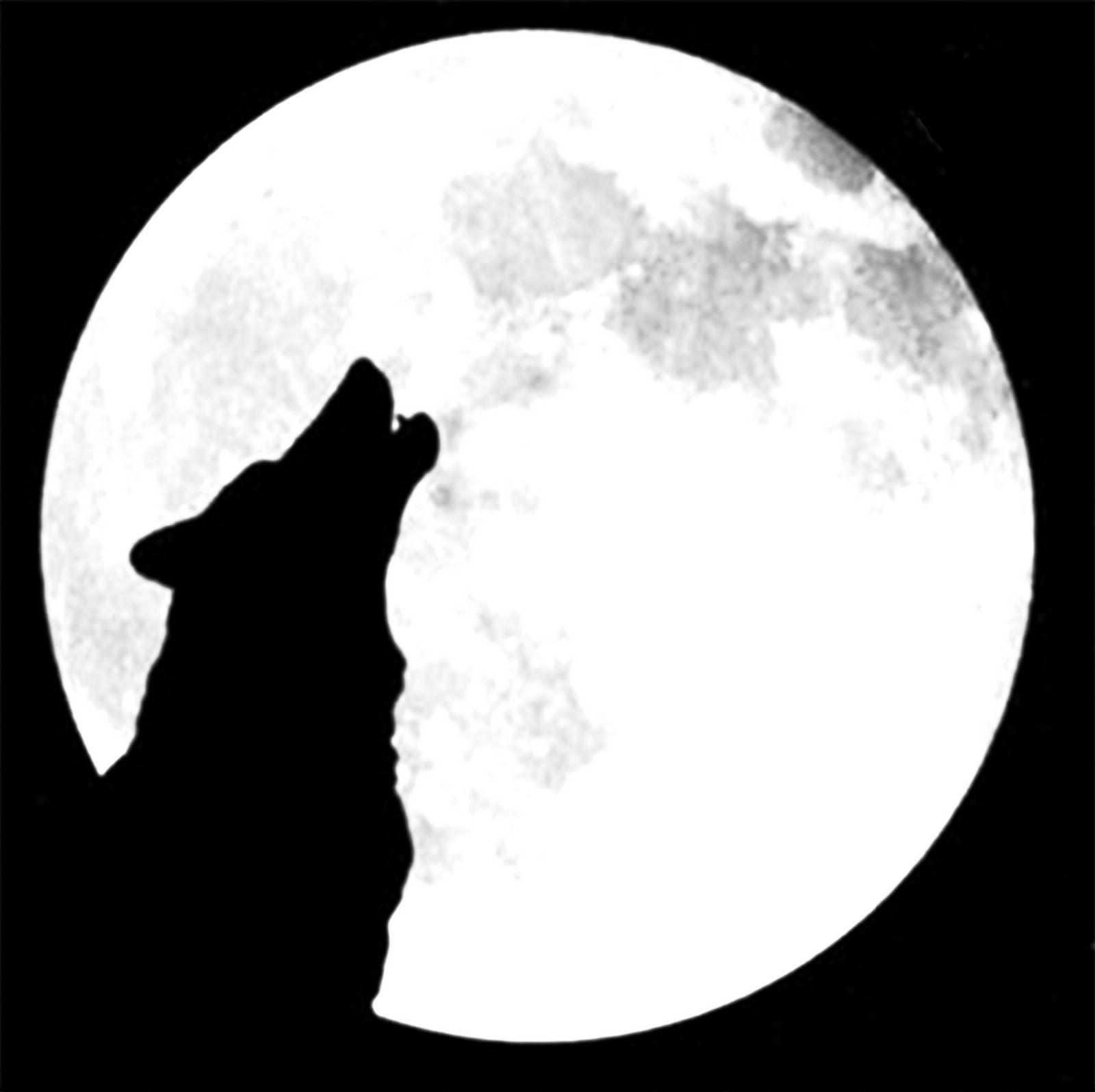 Resultado De Imagen Para Lobo Aullando A La Luna Silueta Caligrama