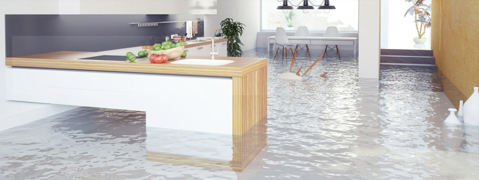 Professional Water Removal Services Water Damage Repair