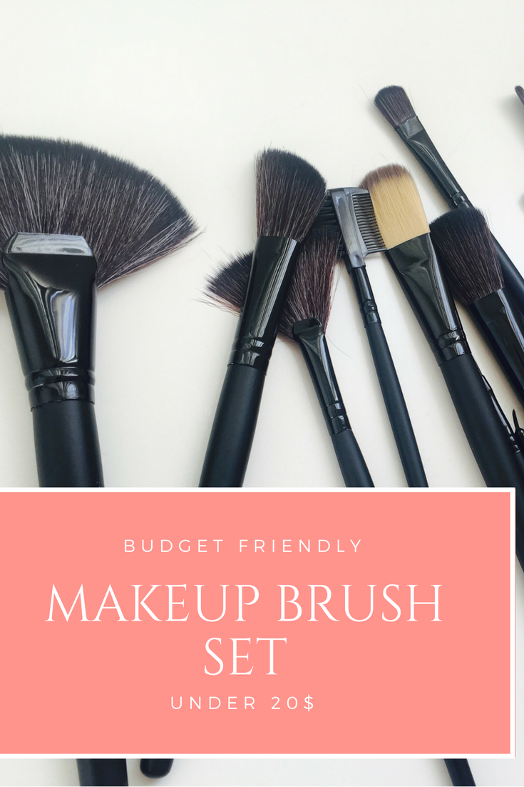 Budget Friendly Makeup Brush Set and Holder Review