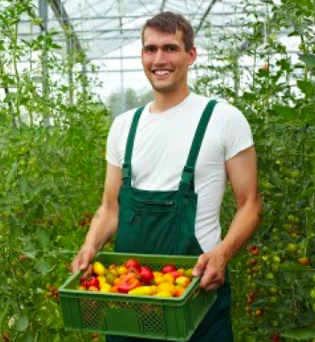 Argument For Going Organic Study Finds Dramatic Economic Benefits