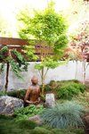 zen-garden-design-san-diego.jpg