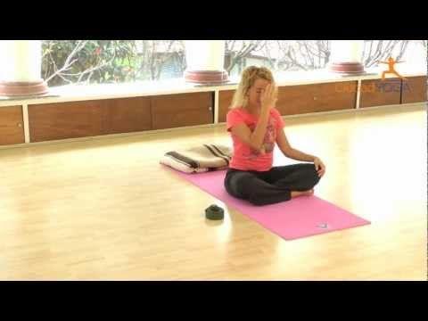 Ejercicios De Yoga Para Principiantes Para Hacer En Casa Ejercicios De Yoga Para Principiantes Ejercicios Para Embarazadas Y Clase De Yoga