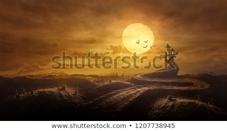 Halloween Background Through Stretched Road Grave To Castle Spooky In Night Of Full Moon And Bats Flying Halloween Backgrounds Background Photo