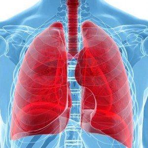 Oli Essenziali per la Bronchite