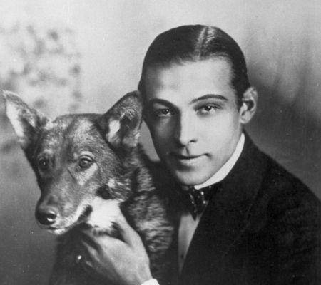 Rodolfo Valentino e il suo cane: ispirazione per cocktail whisky