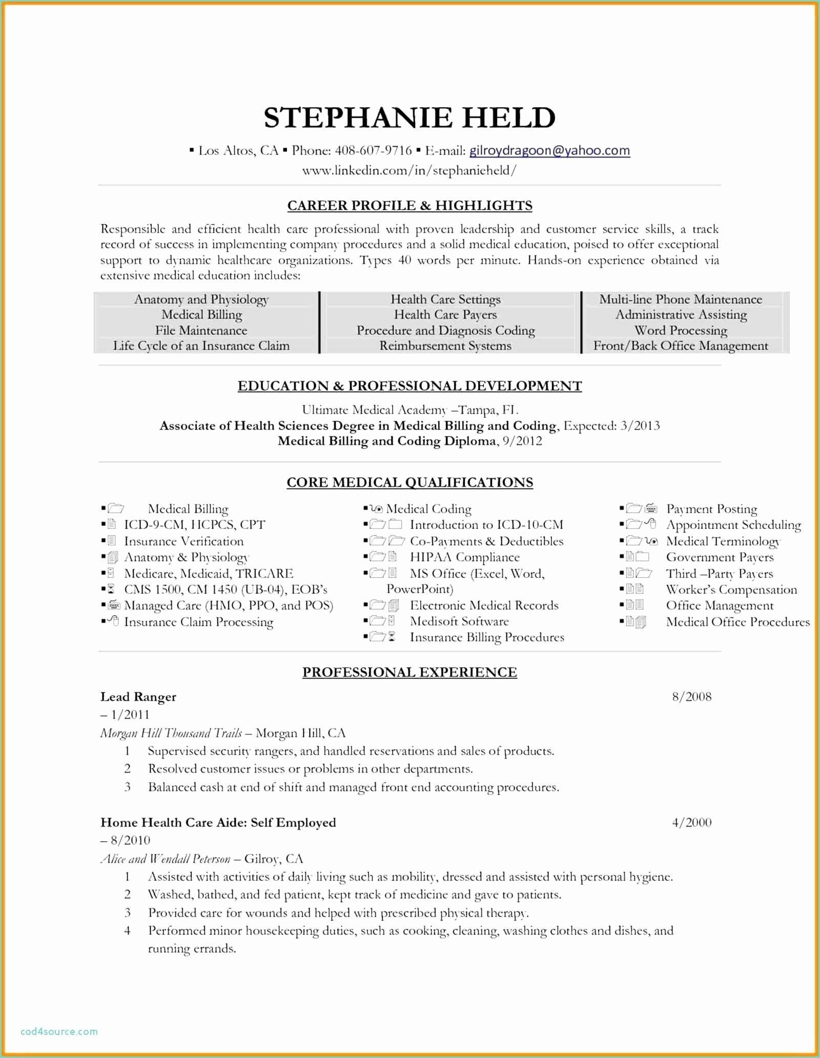 Insurance Agency Business Plan Template Free Inspirational