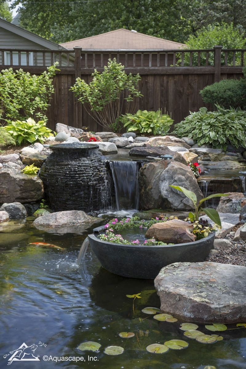 Gorgeous Water Garden Creates Intrigue with Backdrop From ...