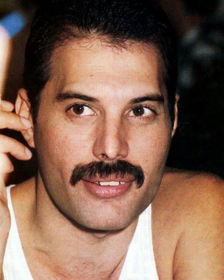 Freddie shared by ✧ on We Heart It #freddiemercury