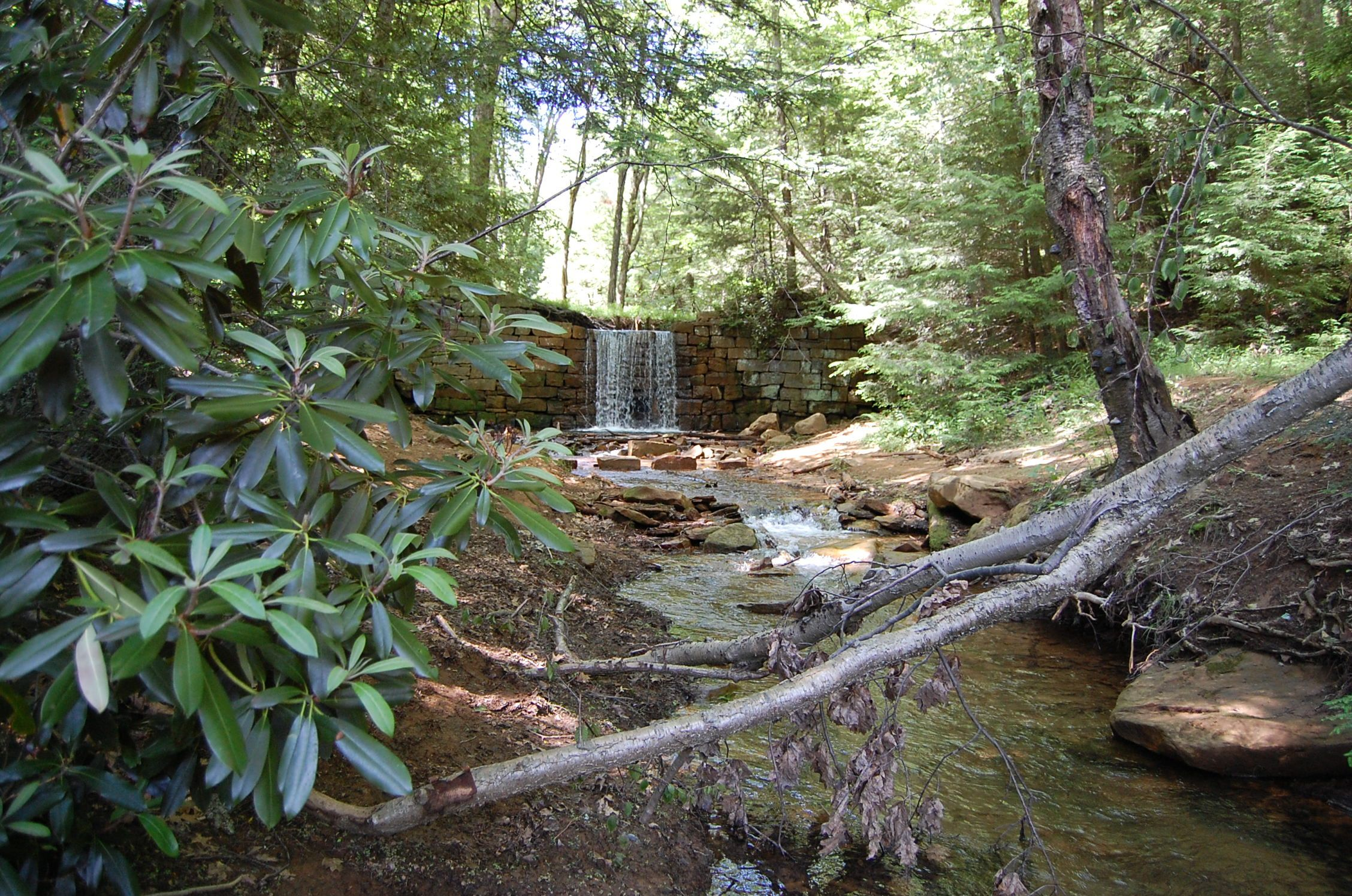 falling waters campground - HD2256×1496
