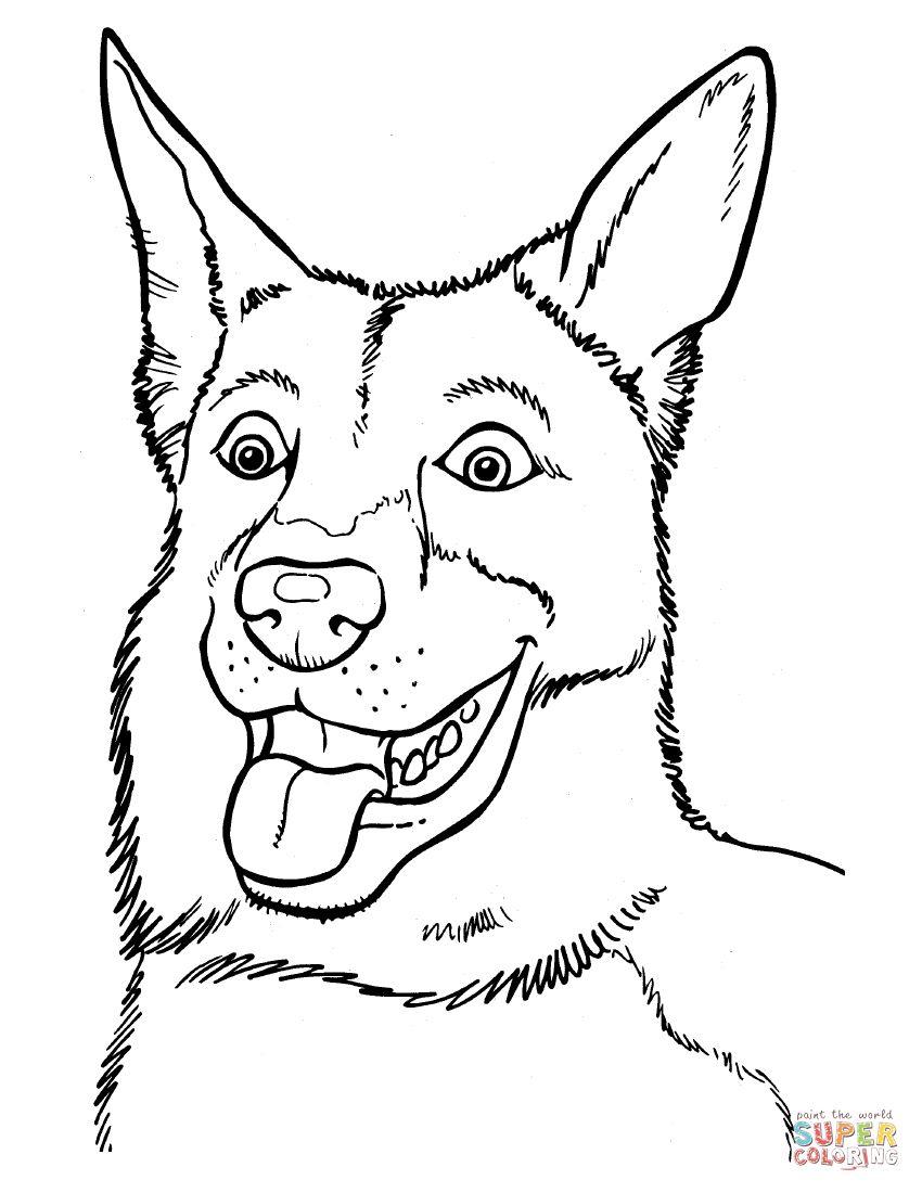 Belgian Malinois Dog Coloring Page Animal Coloring Pages Puppy Coloring Pages