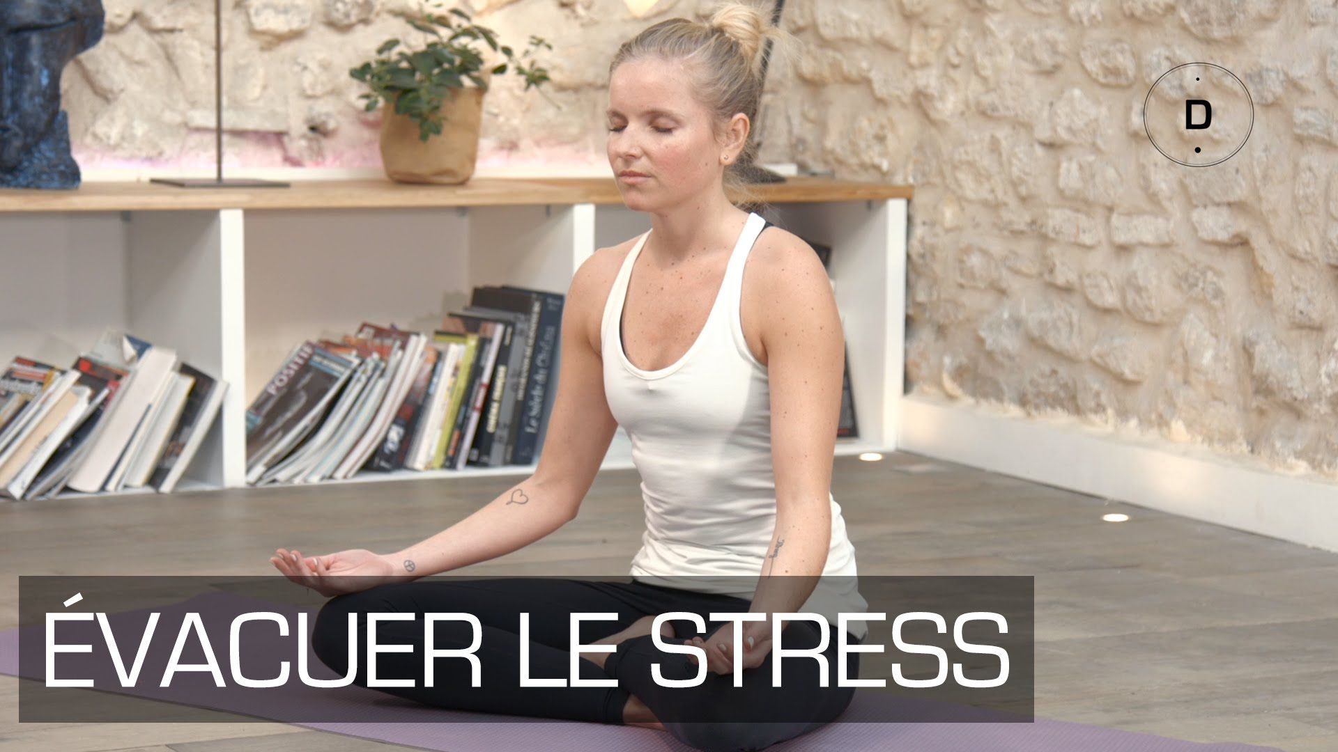 Yoga Master Class Yoga Anti Stress Videos De Yoga Yoga Pour