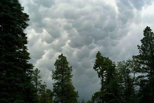 Cumulus Clouds |Cumulus Clouds Lightning